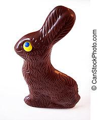 2, kaninchen, kakau