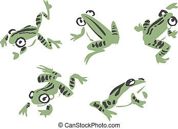abbildung, frosch