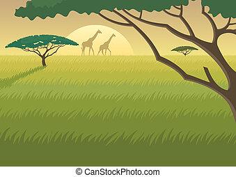 afrikas, landschaftsbild