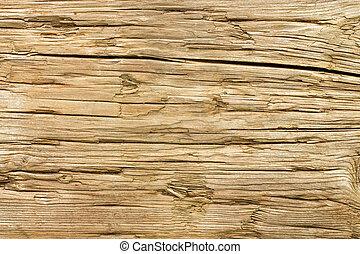 Altes wettertümliches Holzgewölbe.