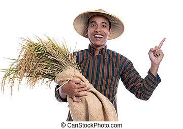 asiatisch, raum, aus, weißes, ausstellung, landwirt, kopie, hintergrund, freigestellt