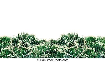aus, baum, dekoration, grüner hintergrund, jahr, neu , weißes