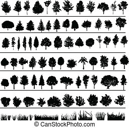Bäume, Büsche, Gras