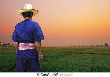 Bauern mit Reisfeldern.