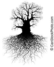 Baum mit Wurzeln.