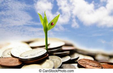 begriff, finanziell, geldmünzen, -, wachstum, neu