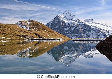 berg, reflexion, schneebedeckt