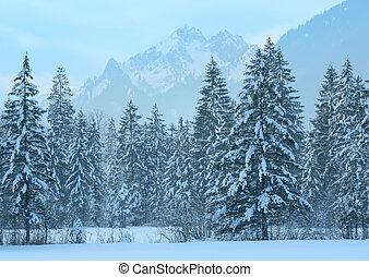 berg, winterlandschaft