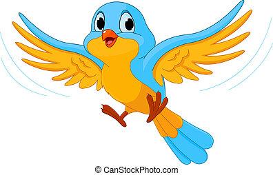 bird, fliegt