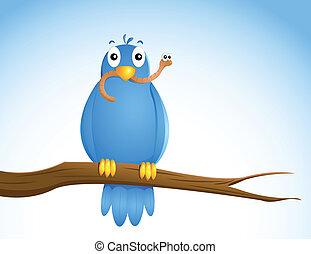 bird...., früh
