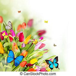 blumen, fruehjahr, vlinders, schöne