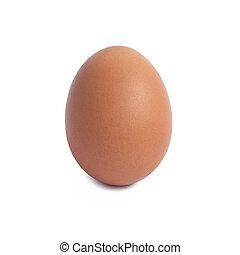 brauner, freigestellt, ledig, weißes ei, huhn