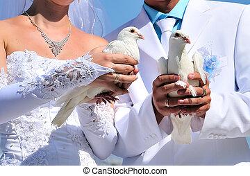 Braut und Bräutigam mit weißen Tauben