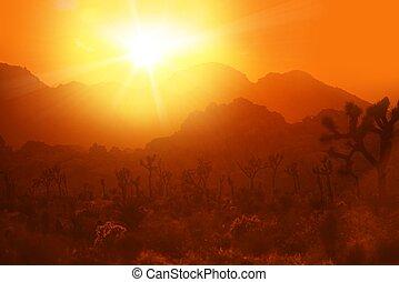 California Desert Hitze