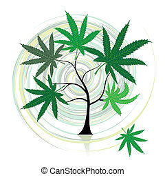 Cannabis-Baum