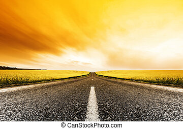 Canola Road Sonnenuntergang