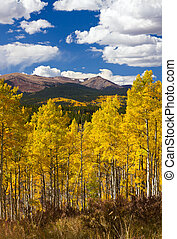 Colorado felsige Berge fallen Landschaft.