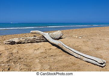 Dekorierte Logbücher am verlassenen Strand mit tiefblauem Meer.