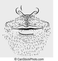 Der Bart des Mannes.Vector Teil des Gesichts
