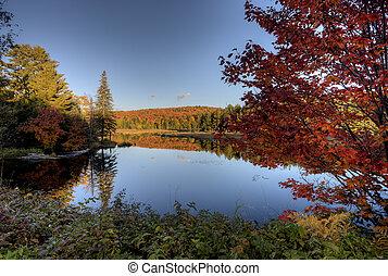 Der See im Herbst.