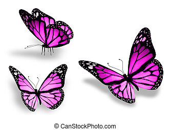 Drei violette Schmetterlinge, isoliert auf weißem Hintergrund