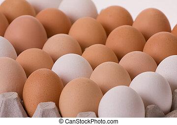Eier in Eierkarton
