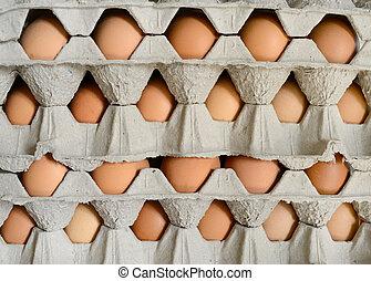 Eier in Kartons.