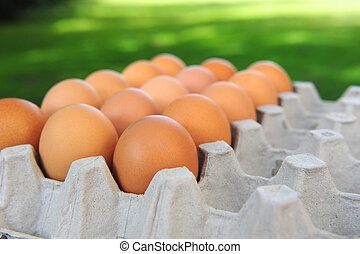 eier, karton, organische