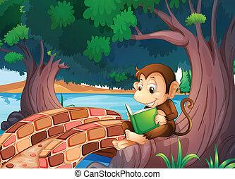 Ein Affe liest ein Buch unter dem großen Baum nahe der Brücke