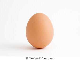 Ein Ei auf weiß
