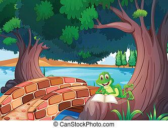 Ein Frosch, der unter dem Baum neben einer Brücke liest
