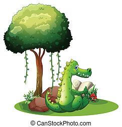 Ein Krokodil am Baum.