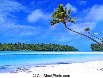 Eine Fußinsel