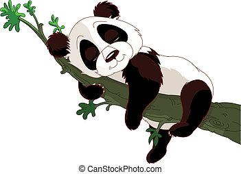 eingeschlafen, panda, zweig