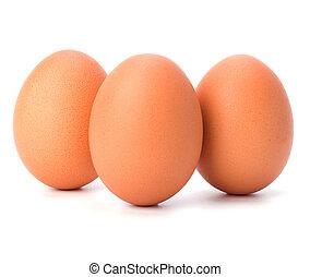 Eizellen isoliert im weißen Hintergrund