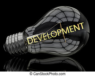 Entwicklung