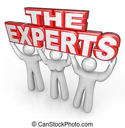 Experten helfen bei der Lösung von Problemen