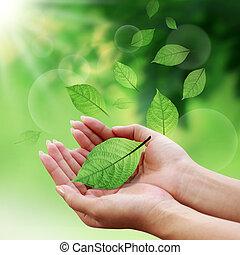 Fürsorgliche Blätter mit der Hand in der Welt