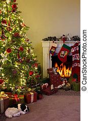 Feuerplatz und Weihnachtsbaum.