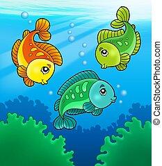 fische, reizend, süßwasser, drei