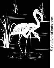 Flamingo auf dem See