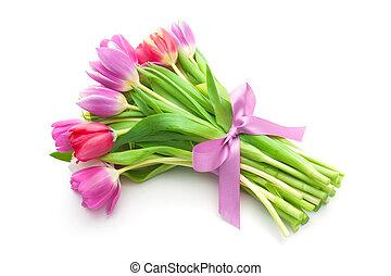 Frühlingstulpenblumen.