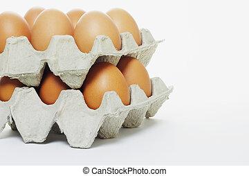 Frische Eier in Kartons