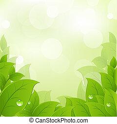 Frische und grüne Blätter