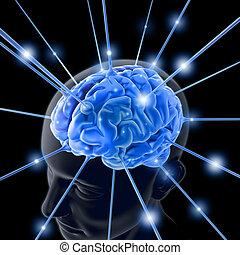 Gehirn aktiviert