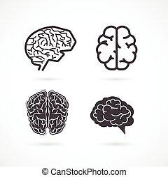 Gehirn - Satz von Vektorgrafiken und Icons.