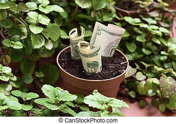 geldbetrieb