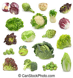 gemüse, sammeln, kappes, grün