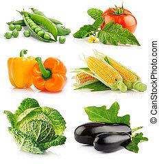 gemüse, weißes, satz, freigestellt, früchte