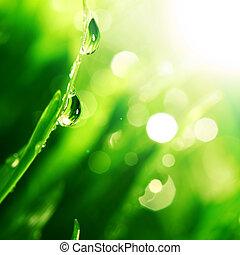 Glänzender Wassertropfen